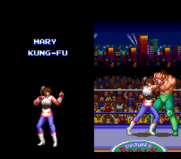 494672-ultimate-fighter-snes-screenshot-character-introductionss